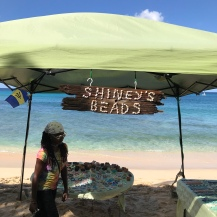 Shiney's Head, una de las hermosas playas de Barbados.